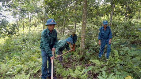 NLĐ Công ty CPCS Lai Châu 2 phát dọn thực bì trên vườn cây.