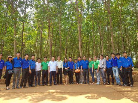 Đoàn công tác tham quan vườn cây Công ty CP Cao su Việt Lào