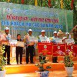 Các CTCS tổ chức lễ ra quân thu hoạch mủ năm 2014 với chủ trương lồng ghép, tiết kiệm