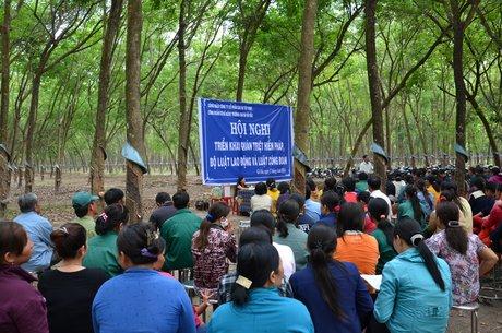 CĐ Cao su Tây Ninh tuyên truyền Hiến pháp, Bộ Luật Lao động và Luật Công đoàn sửa đổi