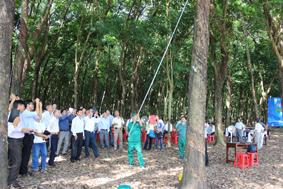Đại biểu xem công nhân NT Bến Củi trình diễn kỹ thuật cạo miệng cao trên vườn cây thanh lý