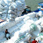 Nông sản chủ lực XK qua Trung Quốc giảm