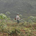 Điều chỉnh quy định quản lý suất đầu tư nông nghiệp