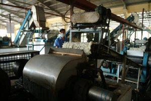 Sản xuất mủ tạp tại Nhà máy chế biến TCT CS Đồng Nai. Ảnh: Tùng Châu