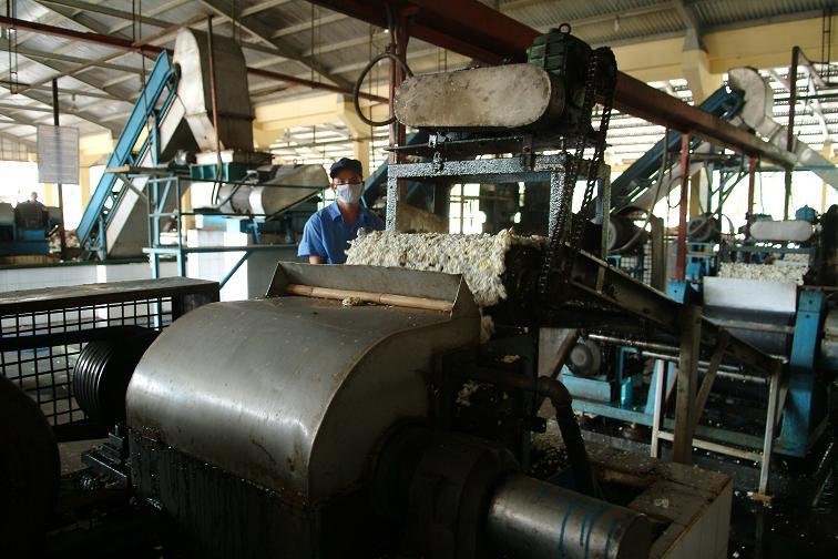 TCT Cao su Đồng Nai: Nâng cao hiệu quả hoạt động của thiết bị chế biến