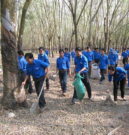 ĐVTN Cao su Dầu Tiếng ra quân tình nguyện nhân Tháng Thanh niên