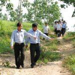 Xem xét mua lại dự án của Cao su Đắk Lắk