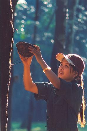 Thế hệ trẻ công nhân cao su hôm nay sẽ tiếp tục gìn giữ và phát huy truyền thống hào hùng.