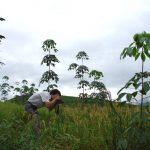 Khai thác tiềm năng, nâng cao giá trị sử dụng đất