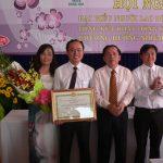 Giá trị sản lượng Gỗ Đông Hòa năm 2014 trên 150 tỷ đồng