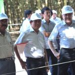 Người bạn lớn của ngành cao su Việt Nam
