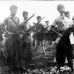 Công nhân cao su năm Ất Mùi 1955: Kiên trì đấu tranh, củng cố hòa bình