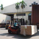 Tập trung nâng cao chất lượng, năng suất và sản lượng vườn cây