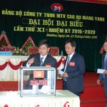 Diện tích khai thác Cao su Mang Yang đến 2020 đạt 21.186 ha
