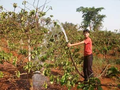 Tươi nước cho cây trồng mùa khô hạn