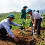 Ra quân trồng mới 200 ha cao su tại Mường Tè, Lai Châu
