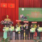 Cao su Việt Nam - Giải thưởng của niềm đam mê sáng tạo