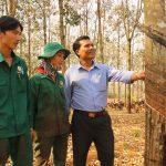 Nông trường Tân Hưng (Cao su Đồng Phú) vượt sản lượng gần 26%/năm