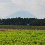 Cao su Tây Ninh: Khen thưởng 4 tập thể, 35 cá nhân tiêu biểu trồng mới