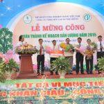 Cao su Phú Riềng hoàn thành khai thác 23.500 tấn mủ, về đích trước 34 ngày