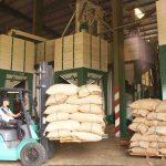 TPP: Cơ hội tái cơ cấu nền nông nghiệp
