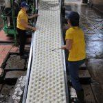 Ứng dụng tiến bộ khoa học kỹ thuật trong chế biến mủ cao su (kỳ 2)