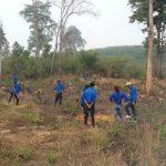 Cao su Sa Thầy: Thực hiện khuôn viên cây xanh mừng ngày thành lập Đoàn