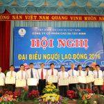 Cao su Tây Ninh tiết giảm 31% suất đầu tư nông nghiệp