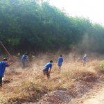 Mỗi ĐVTN Cao su Phước Hòa tham gia ít nhất một hoạt động tình nguyện