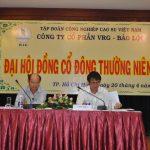 Thủy điện VRG Bảo Lộc chia cổ tức 16%
