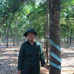 Nữ công nhân dân tộc Châu Ro Hai Giỏi