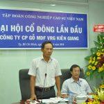 Thành lập Công ty CP Gỗ MDF VRG Kiên Giang