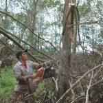 Cao su Mang Yang khắc phục hậu quả lốc xoáy