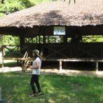 Bình Phước trồng cao su tạo quỹ bảo tồn Bộ chỉ huy Miền