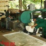 Xây dựng tiêu chuẩn quốc gia về nguyên liệu mủ cao su: Không thể chậm trễ