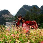 Mùa hoa trên cao nguyên đá Đồng Văn