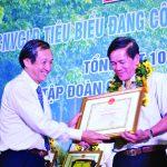 """""""Chương trình phát triển cao su tại Campuchia phát huy hiệu quả"""""""