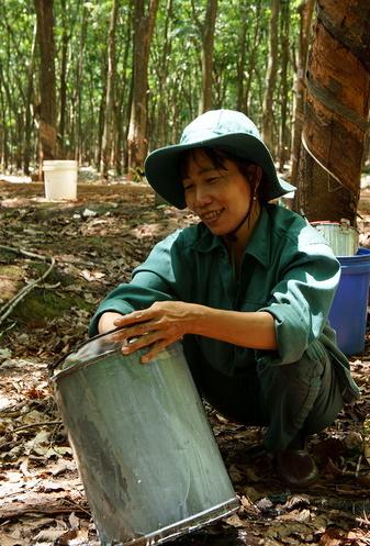 Ảnh: Mạc Thị Hồng Hạnh