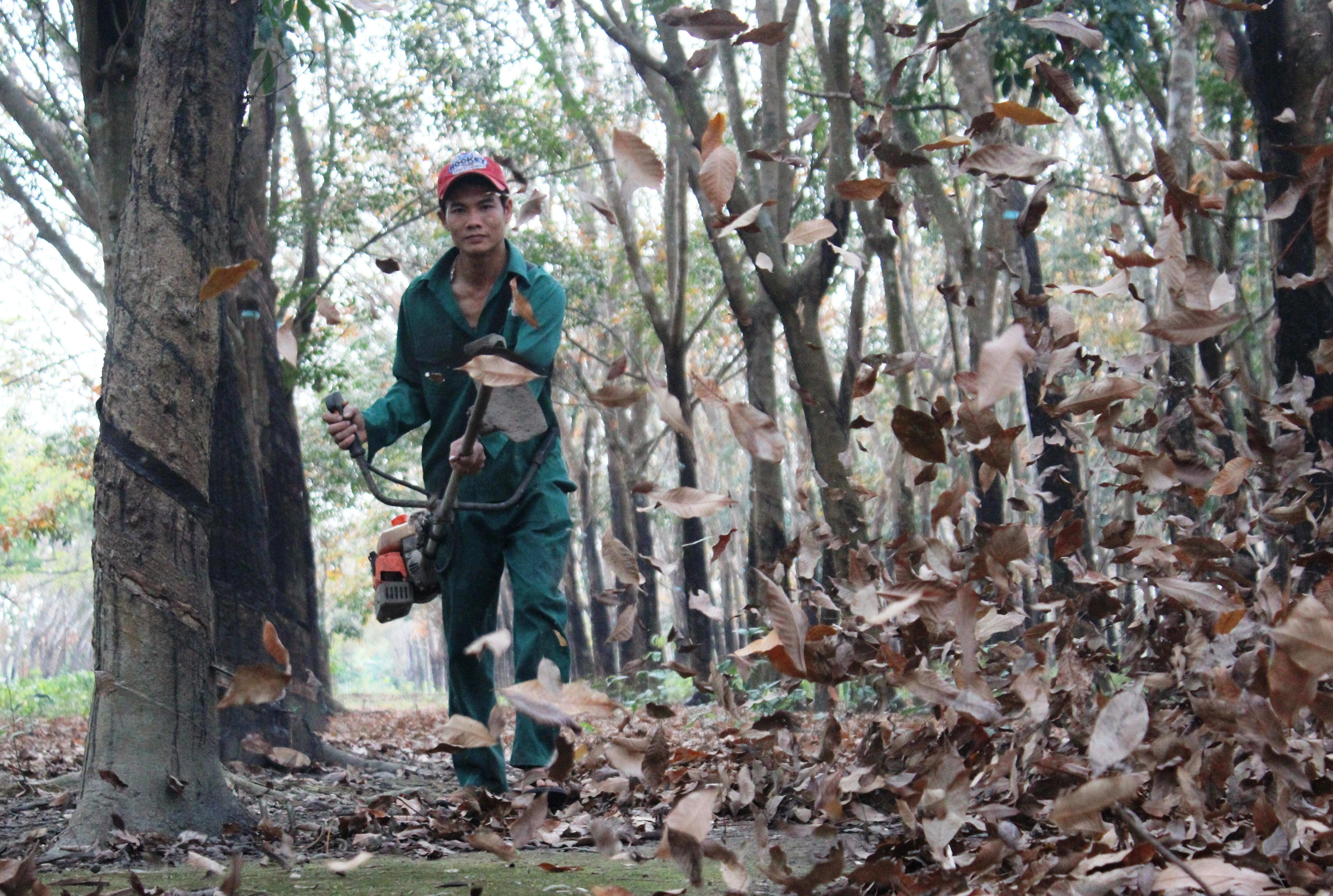 Thổi lá phòng chống cháy – nhiệm vụ quan trọng trong mùa khô