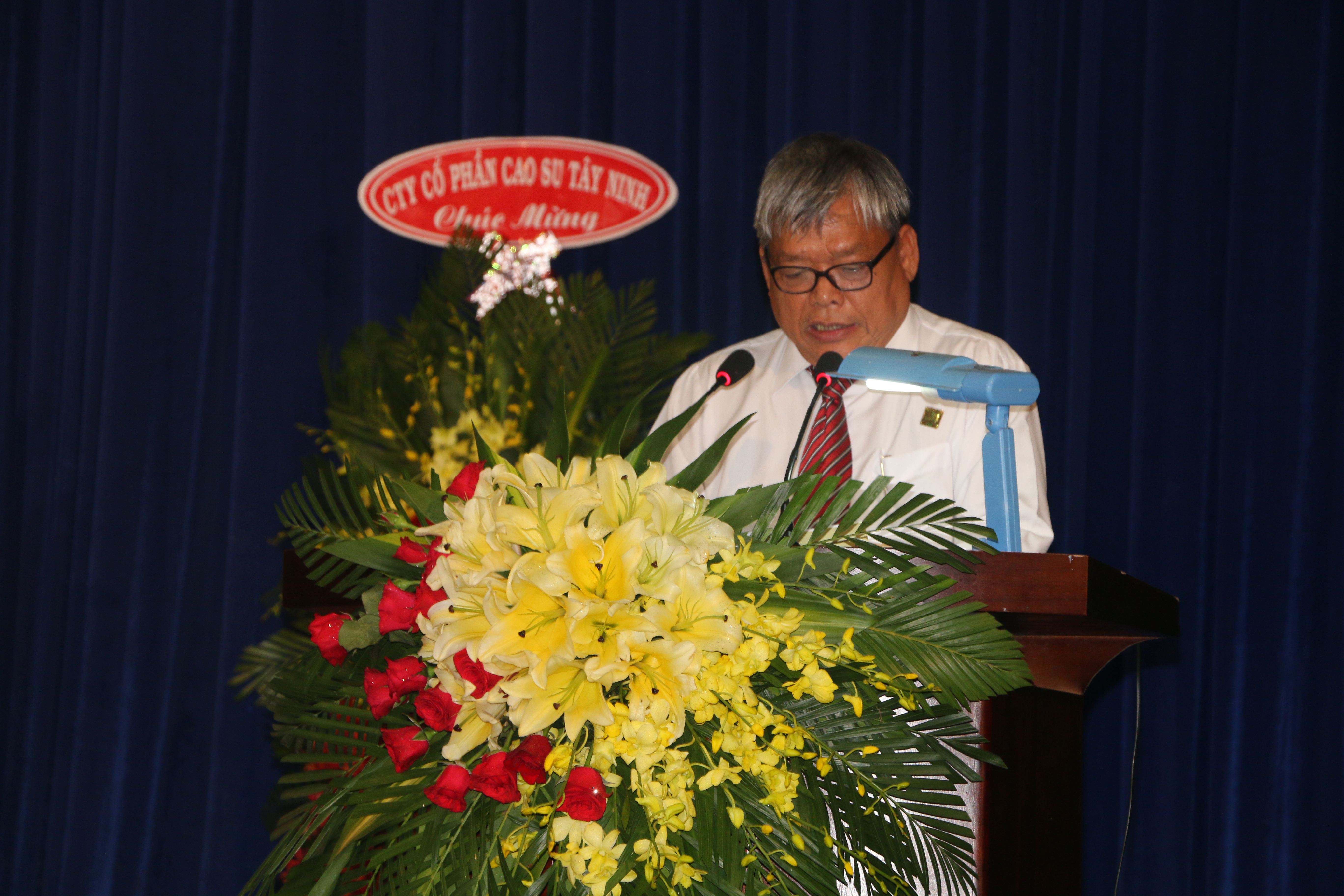 Ông Lê Phi Hùng báo cáo hoạt động SXKD năm 2016 và phương hướng năm 2017 của công ty