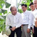 Ngành nông nghiệp sẽ chuyển mình mạnh mẽ năm 2017