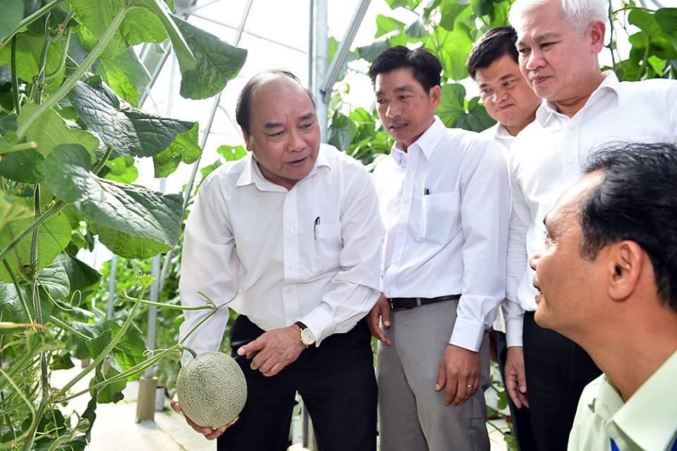 Thủ tướng Nguyễn Xuân Phúc (bìa trái) tham quan mô hình trồng dưa lê tại Trung tâm nông nghiệp công nghệ cao Bình Phước