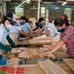 Phải xây dựng thương hiệu gỗ cao su Việt Nam