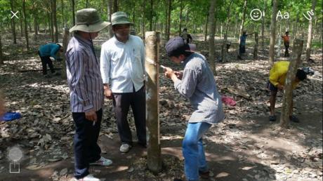 cán bộ kỹ thuật giám sát công nhân học cạo