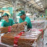 Chấn chỉnh, ổn định và nâng cao chất lượng sản phẩm