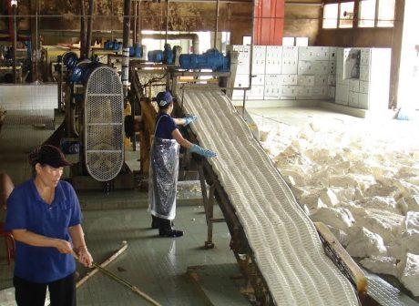 Nhiều giải pháp được ứng dụng giúp nâng cao chất lượng sản phẩm tại Xí nghiệp Cơ khí Chế biến. Ảnh: CTV