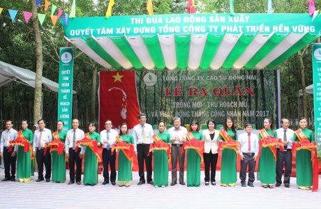 Đại diện lãnh đạo VRG, CĐ Cao su VN, chính quyền địa phương và TCT Cao su Đồng Nai thực hiện nghi thức lễ ra quân