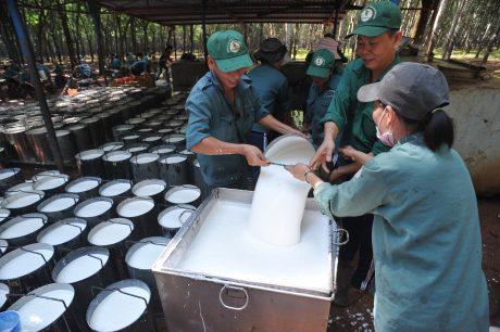 Lực lượng lao động ổn định giúp các đơn vị thực hiện tốt kế hoạch sản xuất kinh doanh năm 2017. Ảnh: Tùng Châu