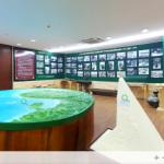 Sống động phòng truyền thống 3D ngành cao su