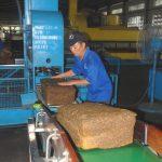 Cao su nguyên liệu sản xuất lốp xe: thừa vẫn thừa, thiếu vẫn thiếu